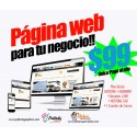 Website for your business from $ 99